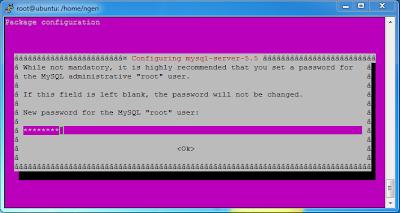 password for mysql root user