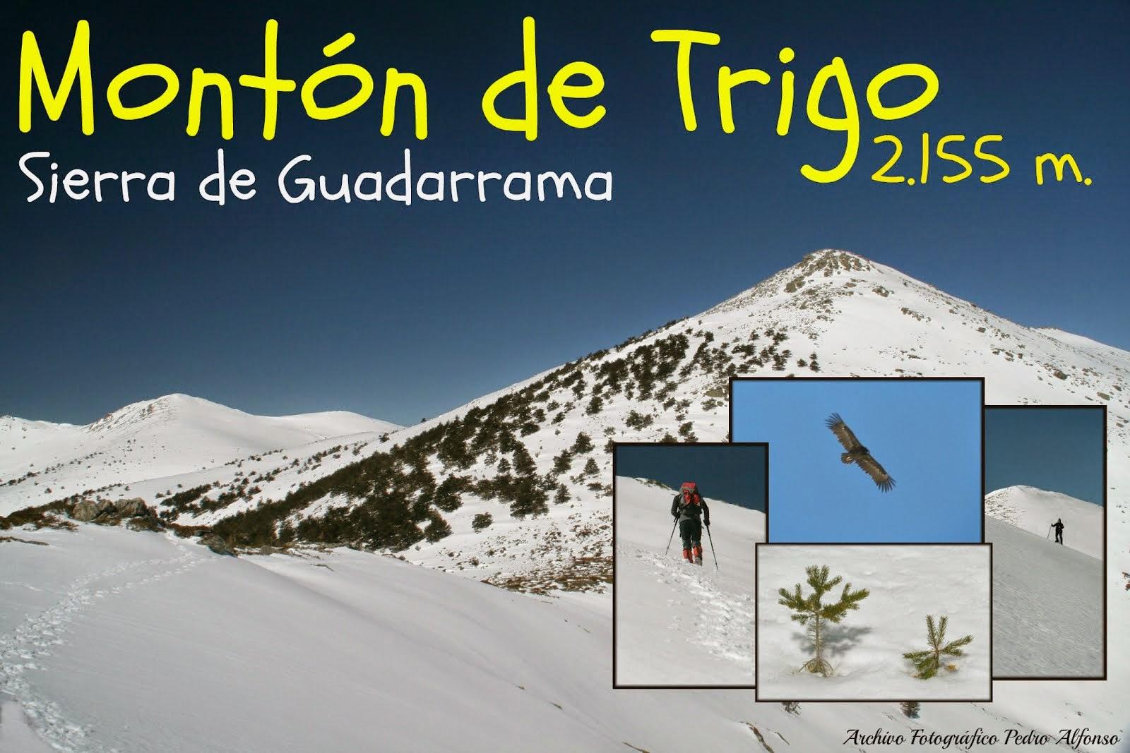 Asciende a la Sierra de Guadarrama y sus más alta cimas con el Zorro Corredero