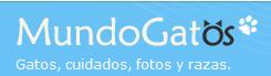 http://www.mundogatos.com/