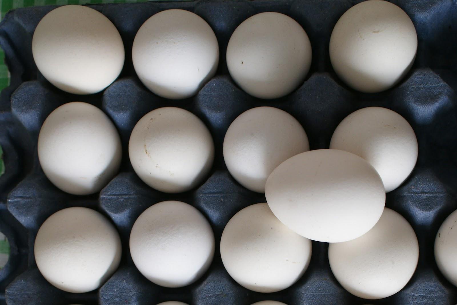 Periodismo del sureste chiapas sin huevos for Huevo en el ano