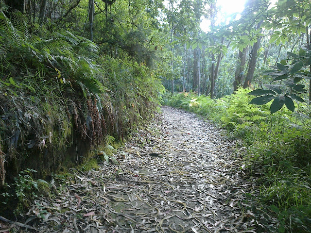 Camino PR-G 17 Arredor de Cambre