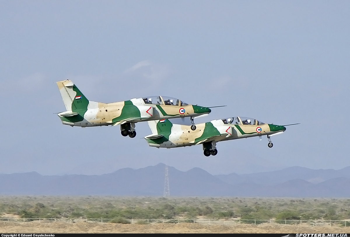 Hongdu JL-8 Karakorum-8 of the North Sudan Air Force - Asian ...