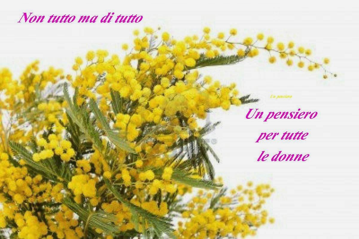 Una mimosa per l'otto marzo