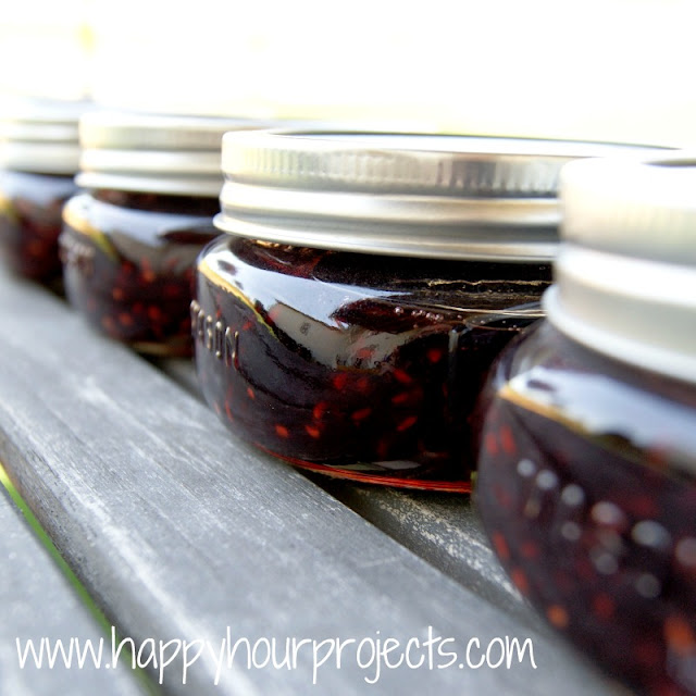 Raspberry-Pomegranate Jam - Happy Hour Projects