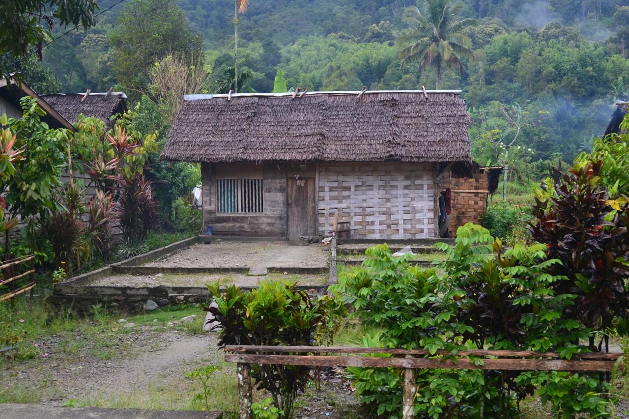 Desa Toro
