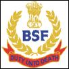 BSF New Delhi- Head Constable (Ministerial) ETC -jobs Recruitment 2015 Apply Online