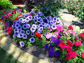 #10 Nice Flowers Garden Wallpapers