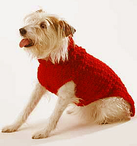Free Knitting Patterns For Dog Coats : Miss Julias Patterns: Free Patterns - 20+ Dog Sweater ...