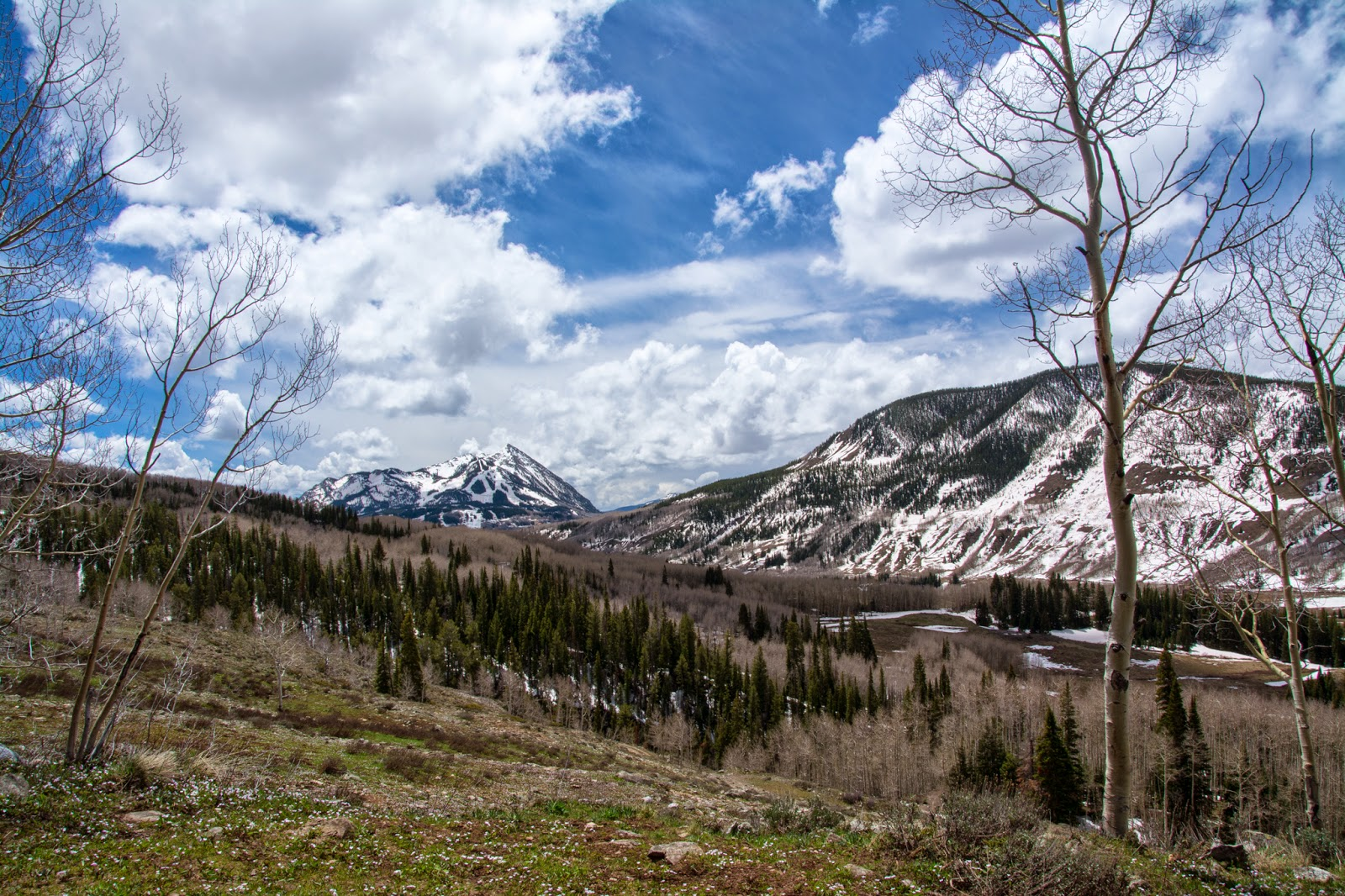 Mt. Crested Butte, Snodgrass Mountain