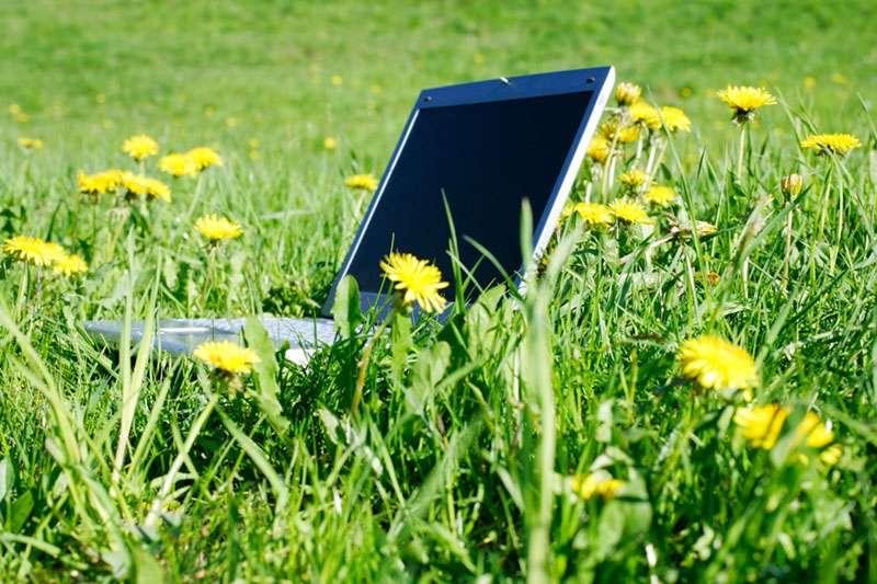 Удалённая работа в интернете на дому вакансии без вложений - b3a89