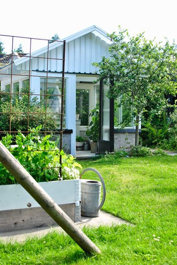 hannas växthus