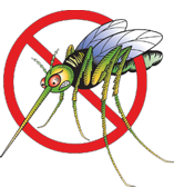 Trampas insectos