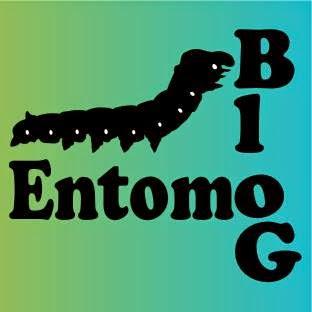 EntomoBloG
