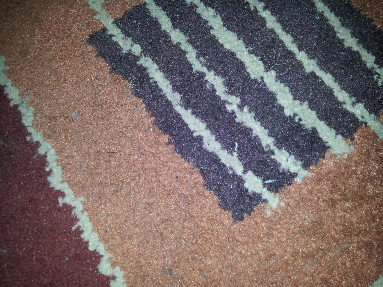 Comercial jucar como limpiar las manchas de las alfombras - Como limpiar las alfombras ...