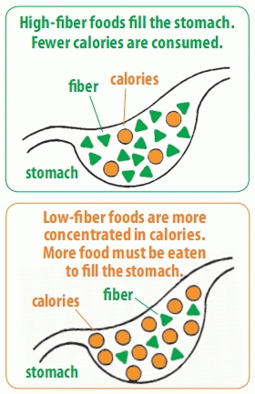 Anywhere Fitness PT : High Fiber Foods: Secret to Weight Loss