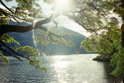 feng shui y la naturaleza