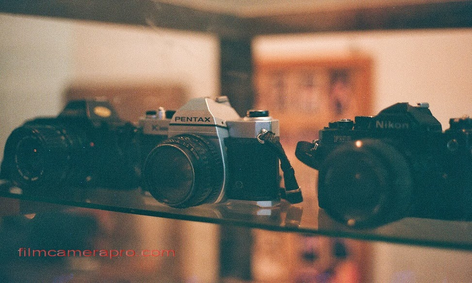 film analog camera