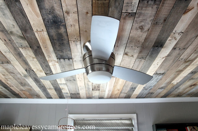 Maple Leaves Amp Sycamore Trees Ceiling The Deal