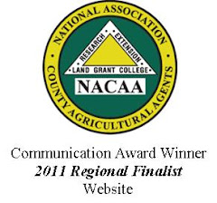 NACAA Award