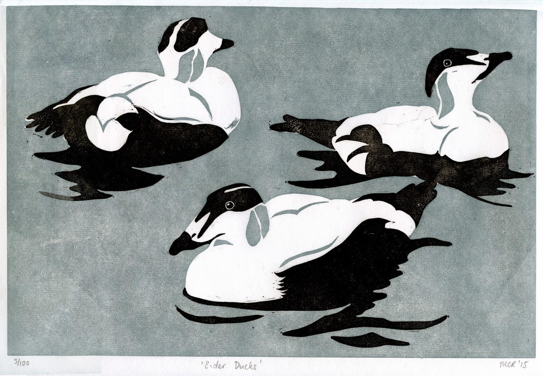 Eider duck linocut