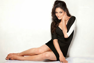 Komal Sharma Picture Shoot Pictures 1369.jpg