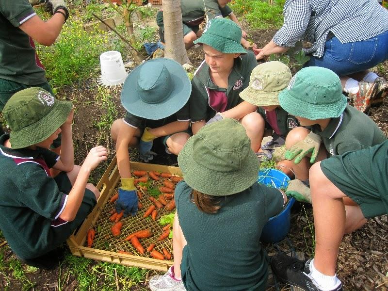 Landcare in Australian schools new program