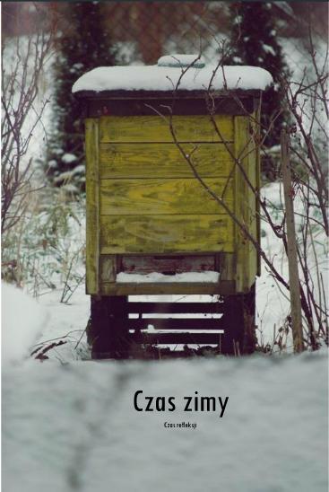 http://issuu.com/domartystyczny/docs/_4/1