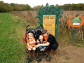 Gentry Farms 2012
