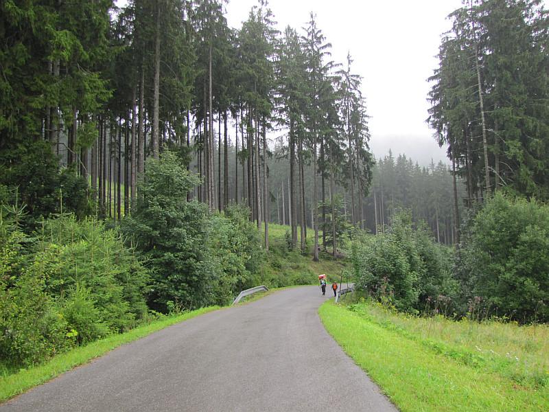 Przed przełęczą pod Lemešnou.