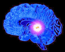 Future of human consciousness involves 'third eye' pineal gland?