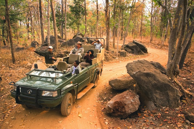 Luxury Safari in India