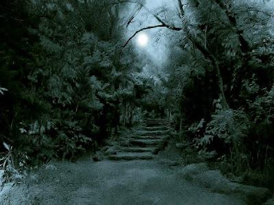 Imagen tenebrosa de unas escaleras que dan entrada a un oscuro bosque nocturno, con la luna en el cielo.