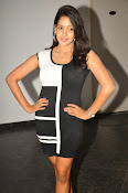 Pavani Reddy Glamorosu Photo shoot-thumbnail-11