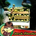 Jeruk Pamelo Magetan