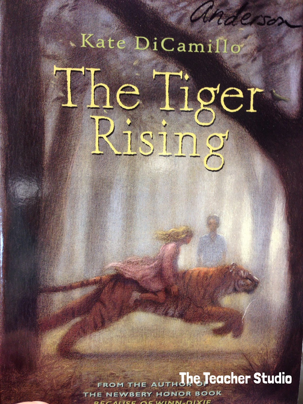 the tiger rising the book i couldn 39 t stand really the teacher studio learning thinking. Black Bedroom Furniture Sets. Home Design Ideas