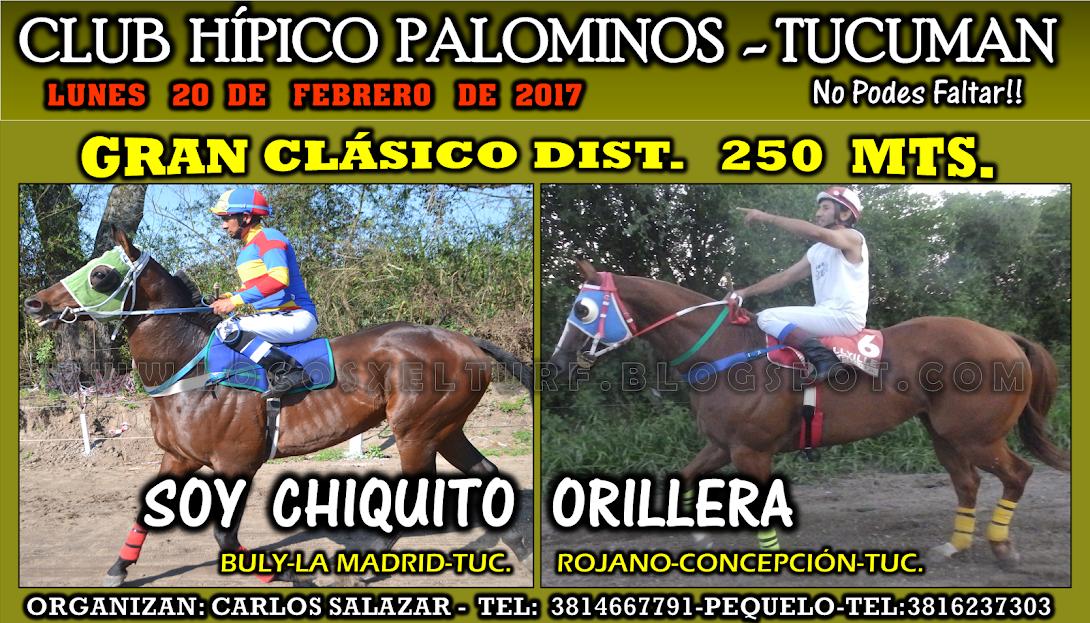 20-02-17-HIP. PALOMINOS}-CLAS.
