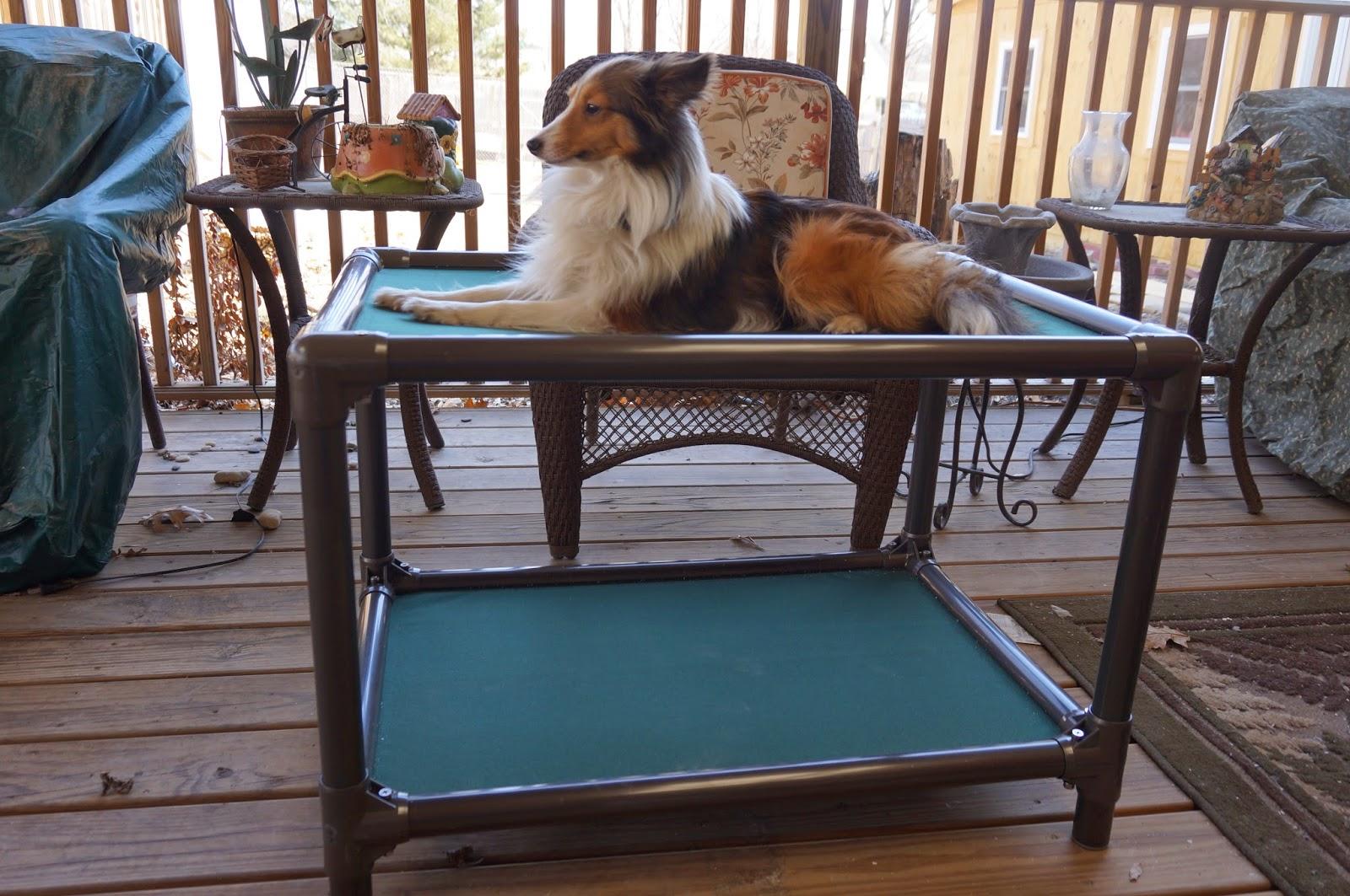durable kuranda ecohaushub bean uk etc beds for dogs bed com warmer bag coupon crates ebay dog