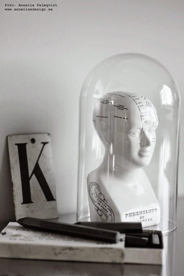phrenology figur, glaskupa, glaskupor, glas, på skrivbordet, skrivbord, bänkskiva, bokstav, grafit stift, vitt, svart och vitt, svartvit, svartvita,