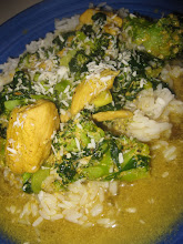 Kyckling i mild currysås
