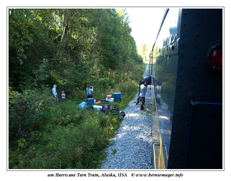 Flagstop Train