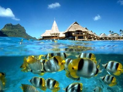 http://1.bp.blogspot.com/-UwAVtdjGlOA/TusTdxlp2AI/AAAAAAAAAas/RMNp6MopWWQ/s1600/Langkawi_Island-Cheap_Malaysia_Tour_Package.jpg