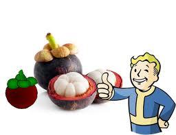 Khasiat dan Manfaat Jus Kulit Manggis dan Daun Sirsak perpaduan