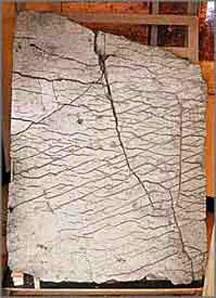 Misteri Batu Dashka