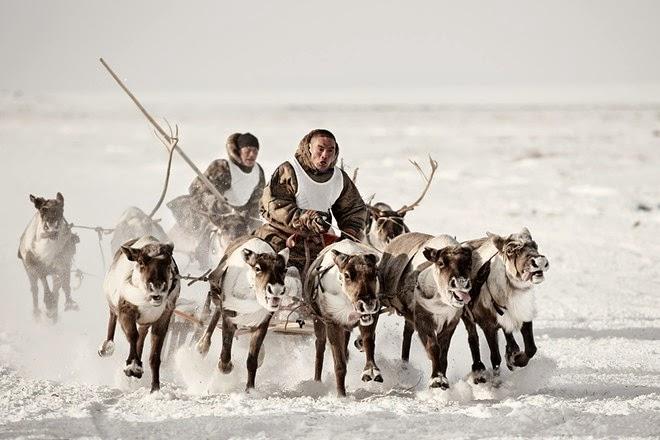 Bộ tộc ăn thịt sống ở Bắc Cực1