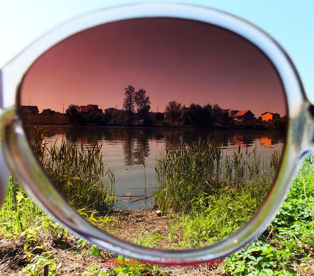 vile mogosoaia prin ochelarii de soare