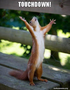 Floyd the Touchdown Squirrel