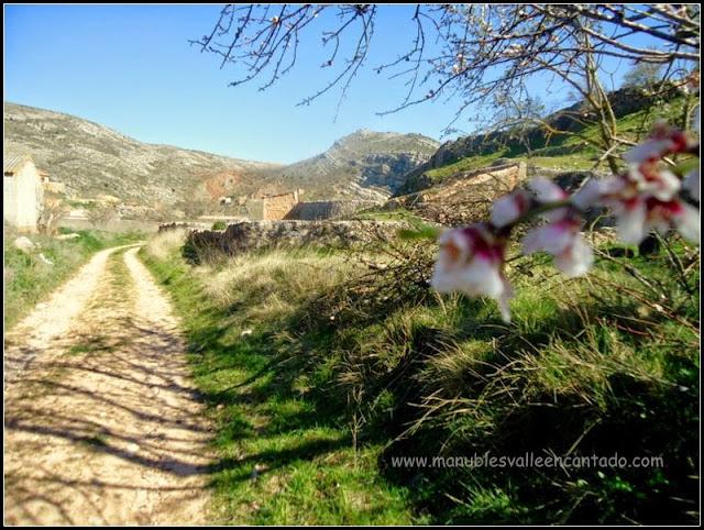 Camino de Barbonera