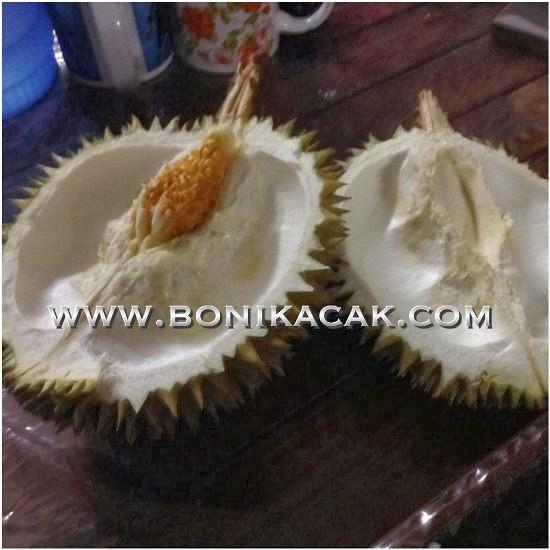 buah durian, makan durian, durian, dalam durian, isi durian, biji durian