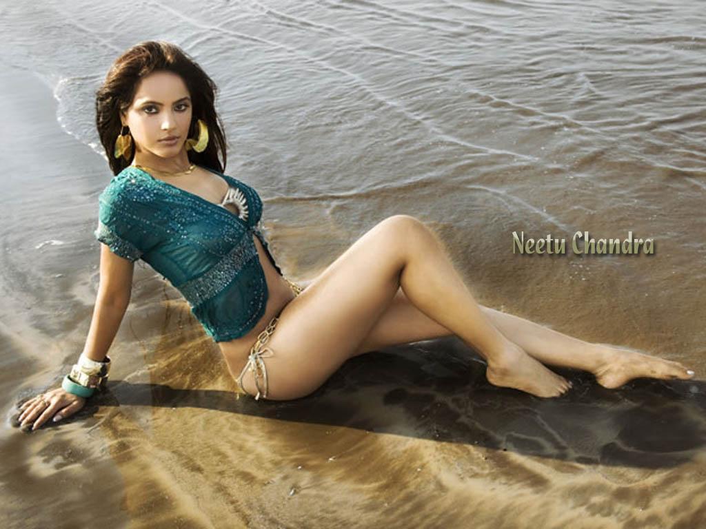 http://1.bp.blogspot.com/-UxUXRvFQ8Hc/UOelyhbo9uI/AAAAAAAAFU8/ZwauGSZvgao/s1600/Neethu_Chandra_4.jpg
