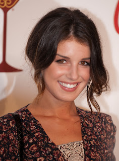 Shenae Grimes Wavy Updo Hairstyle